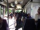 Buszkirándulás - Jeli arborétum - 2013 - Minitali